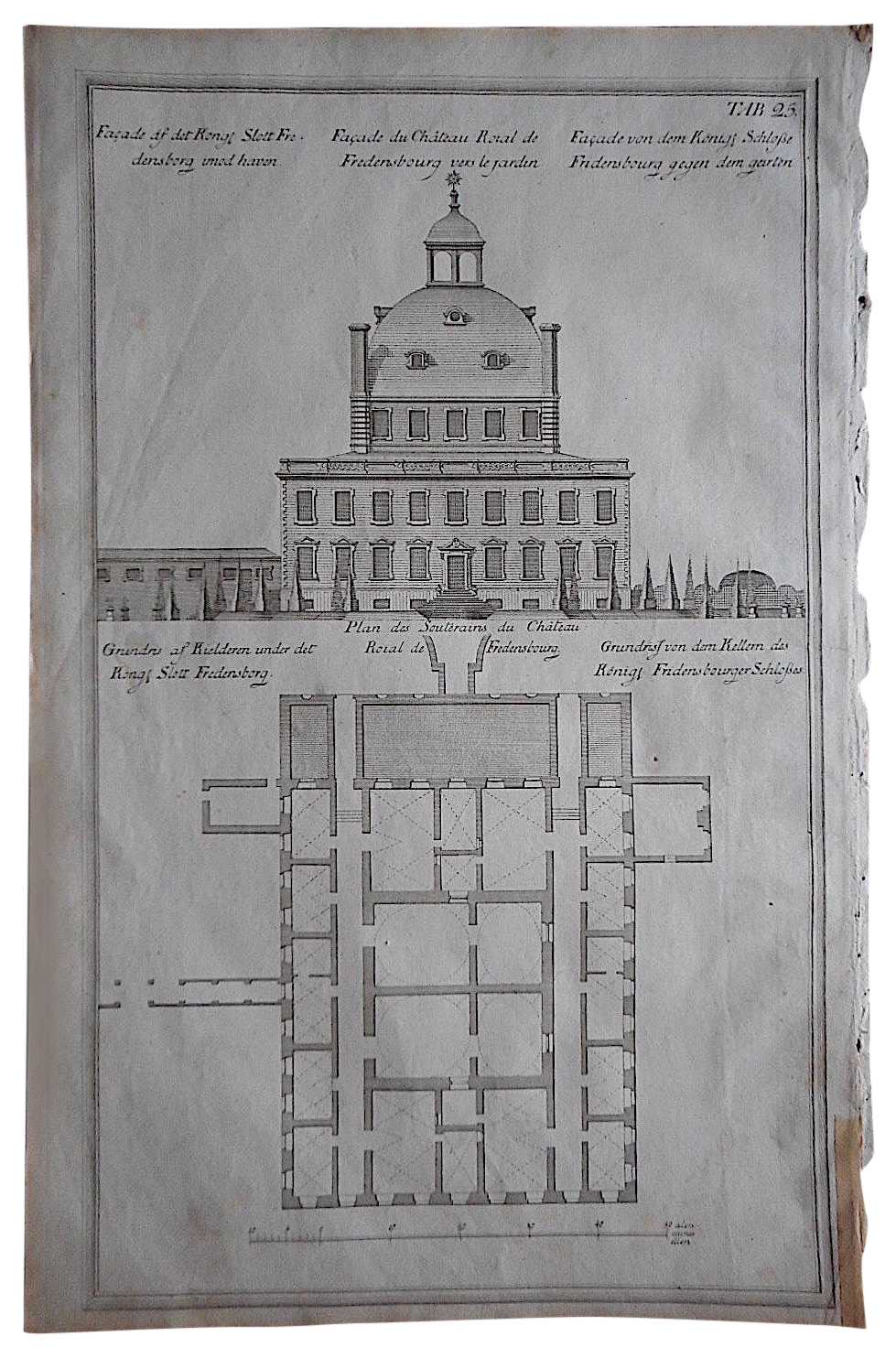 Architectual drawing monochromatic. Antique engraving facade floorplan