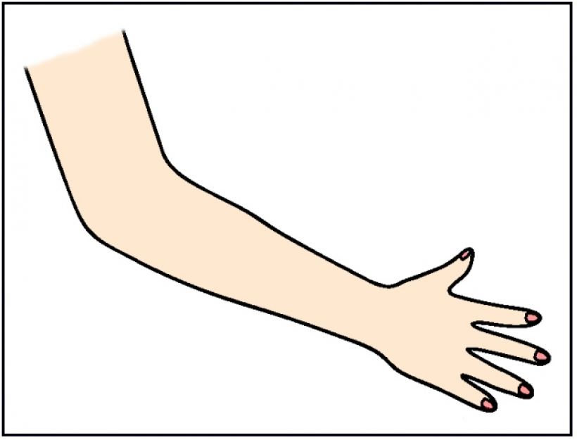 Arm clipart cute hand. Arms image group clip