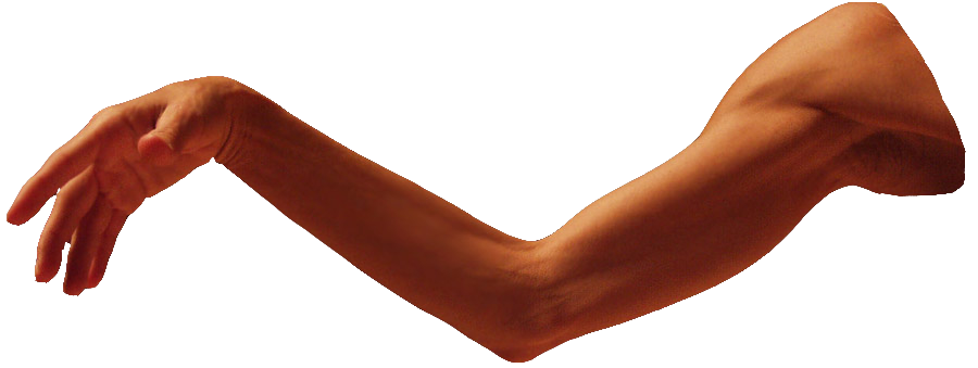 Human arms png. Arm images transparent free