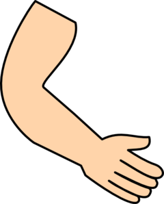 Hands arms png
