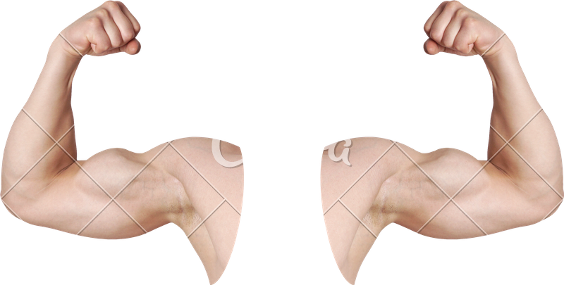 Arm flexing png. Male arms with flexed