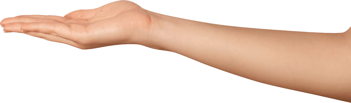 Arms woman png. Hands transparent pictures free