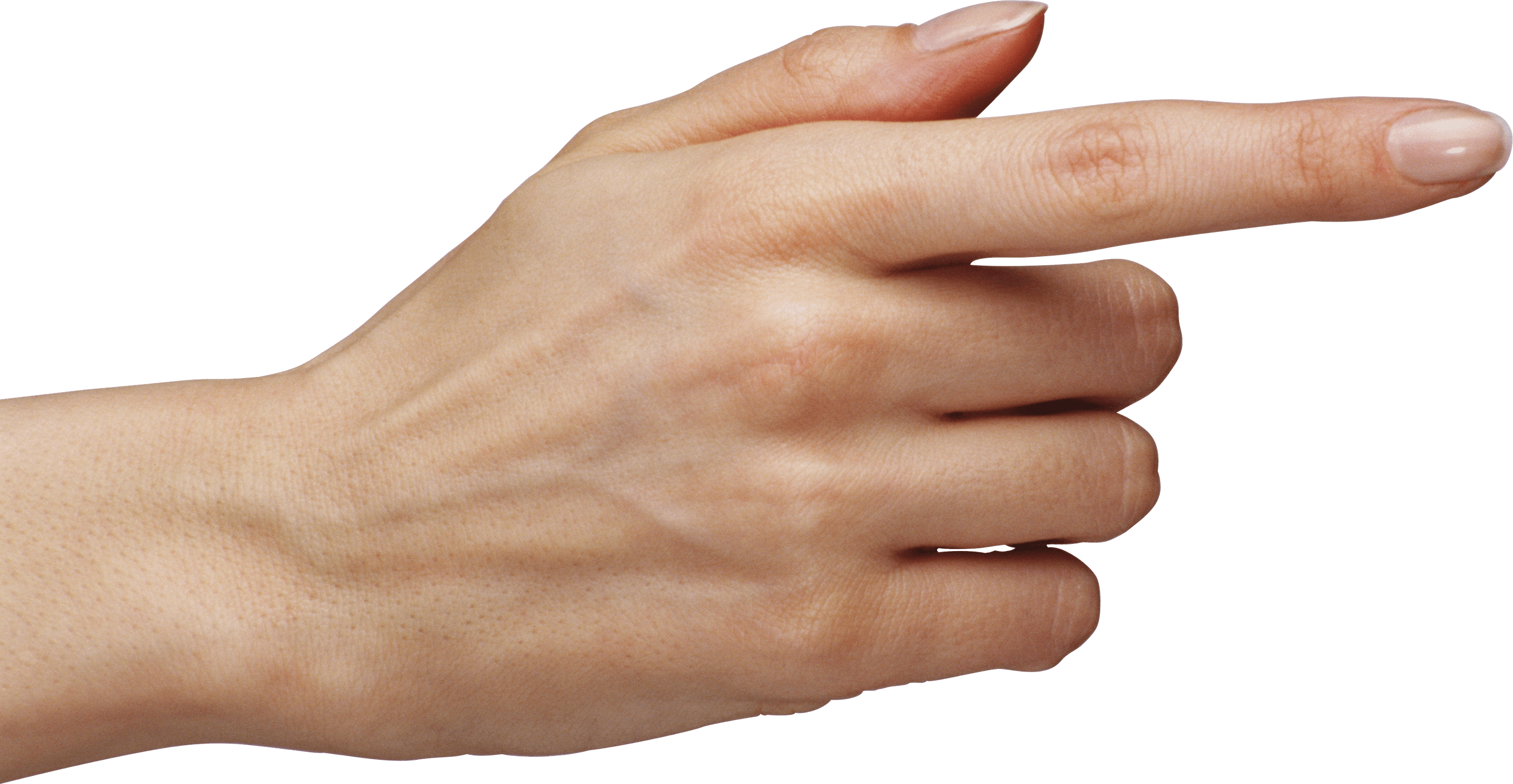Arm pointing png. Woman finger transparent stickpng