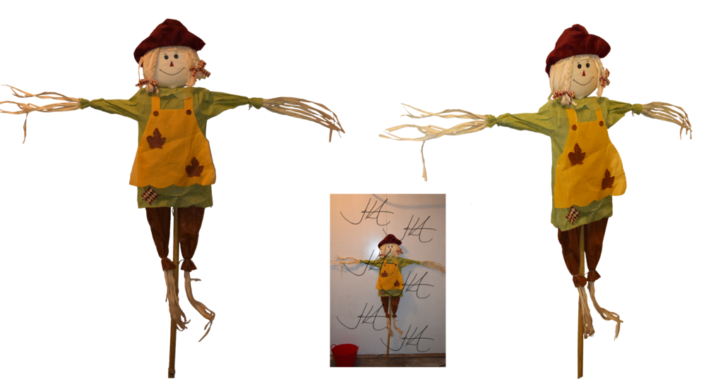 scarecrow transparent kid