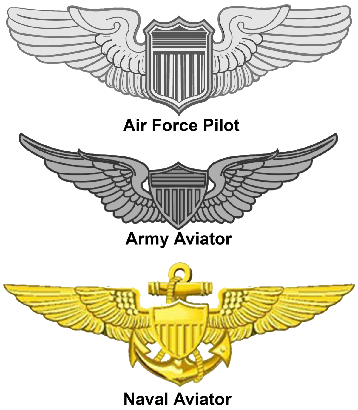 Army drill sergeant badge png. United states aviator wikipedia