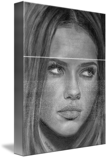 Portraits drawing contemporary. Adriana lima portrait pencil