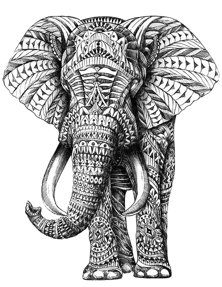 Asia drawing doodle. Tribal pattern elephant south