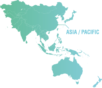 Asia vector pacific. Global map path decorations