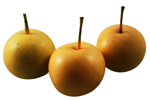 Asian pear png
