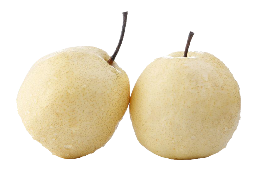 Asian pear png. Two pears transprent free