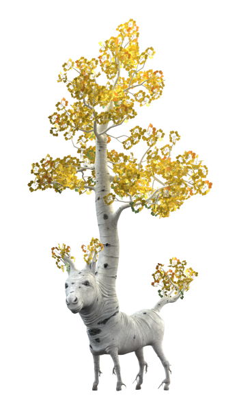Aspen tree png. The story of donkey