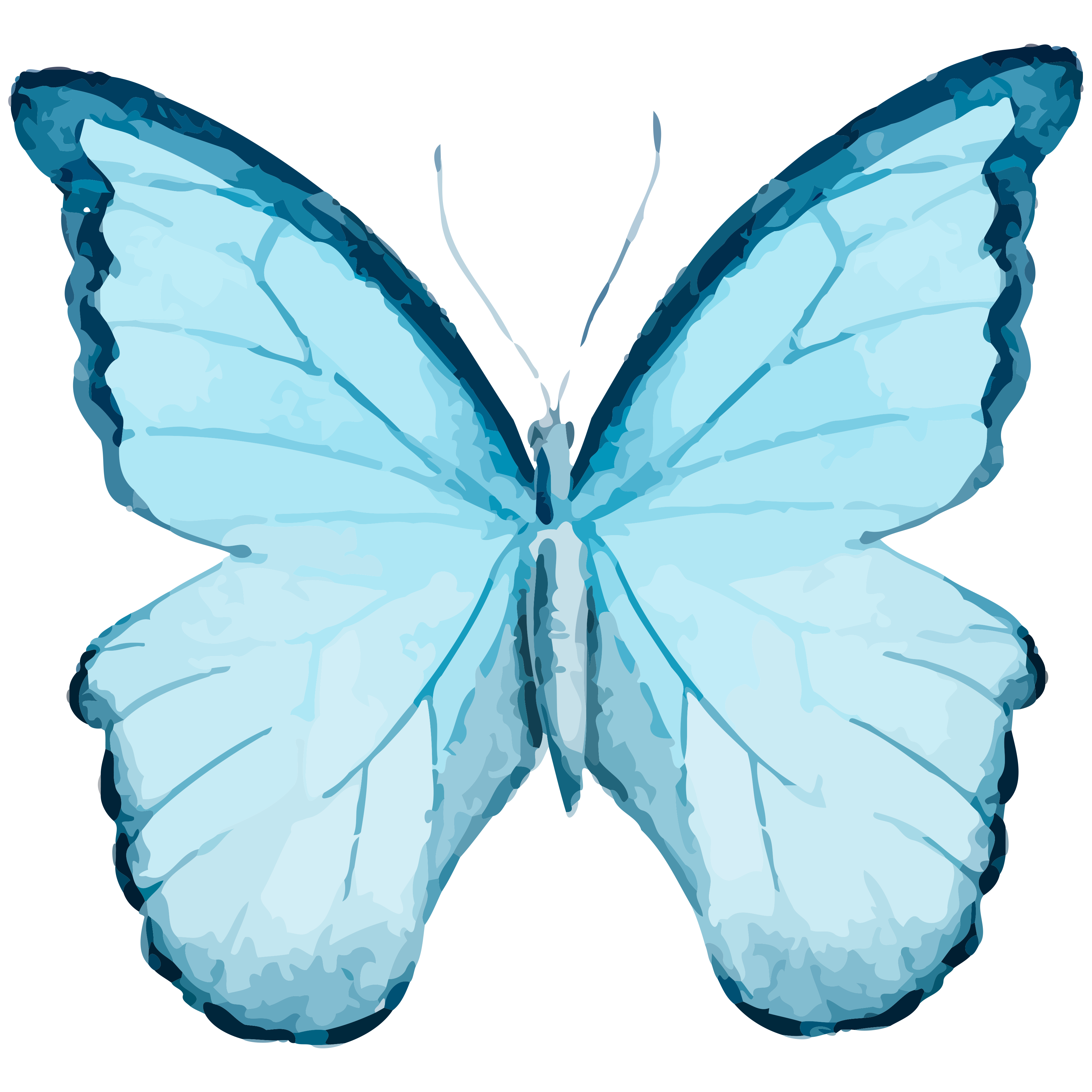 August clipart butterfly. Set of free cu