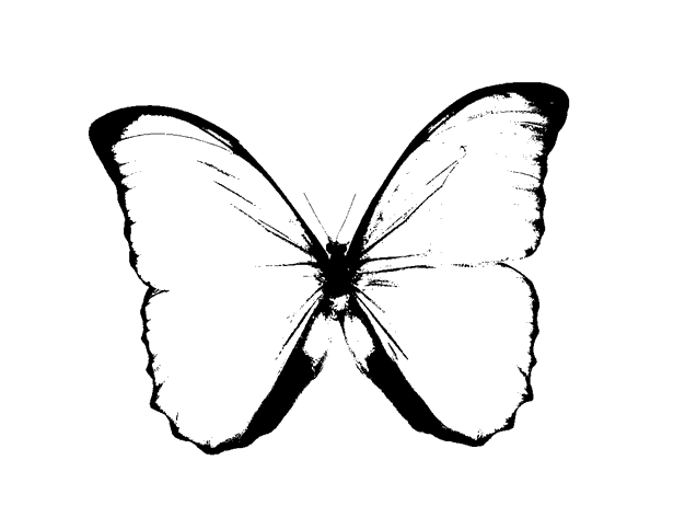 August clipart butterfly. Gensther tattoo black and