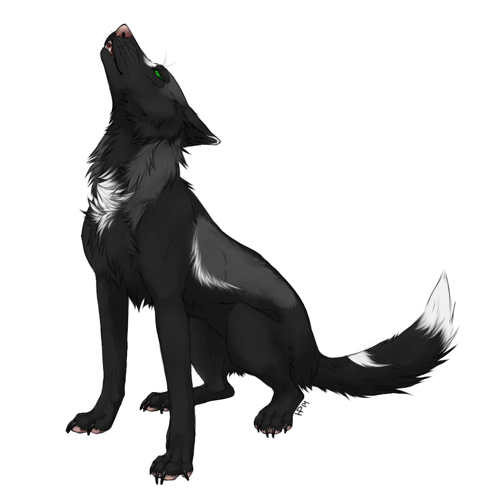 Aura drawing wolf. Wolves colorful howl by