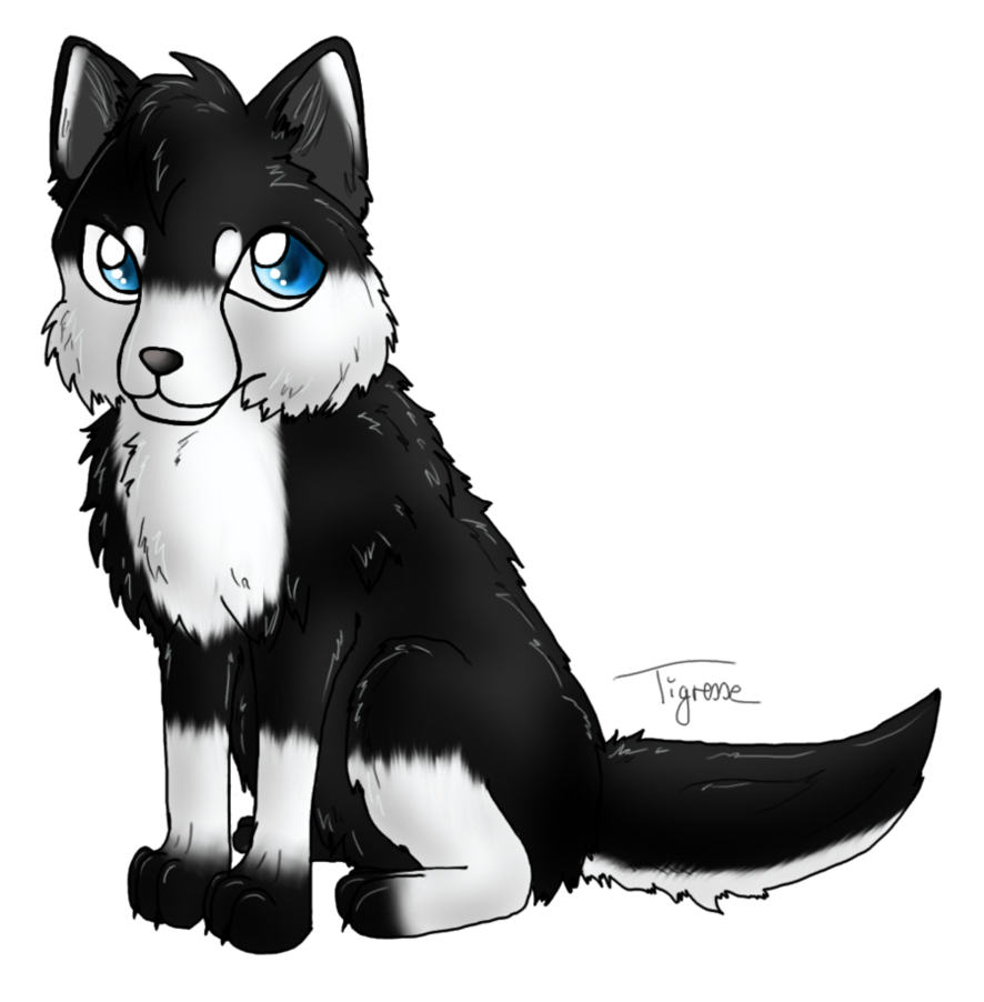 Aura drawing wolf. Chibi by anouki morgenstern