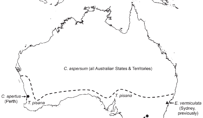 Australia transparent line. Current distribution of introduced