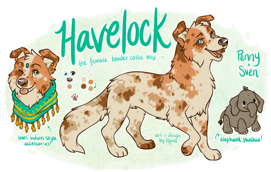 Australian drawing animal. Oc havelock by ranalligator