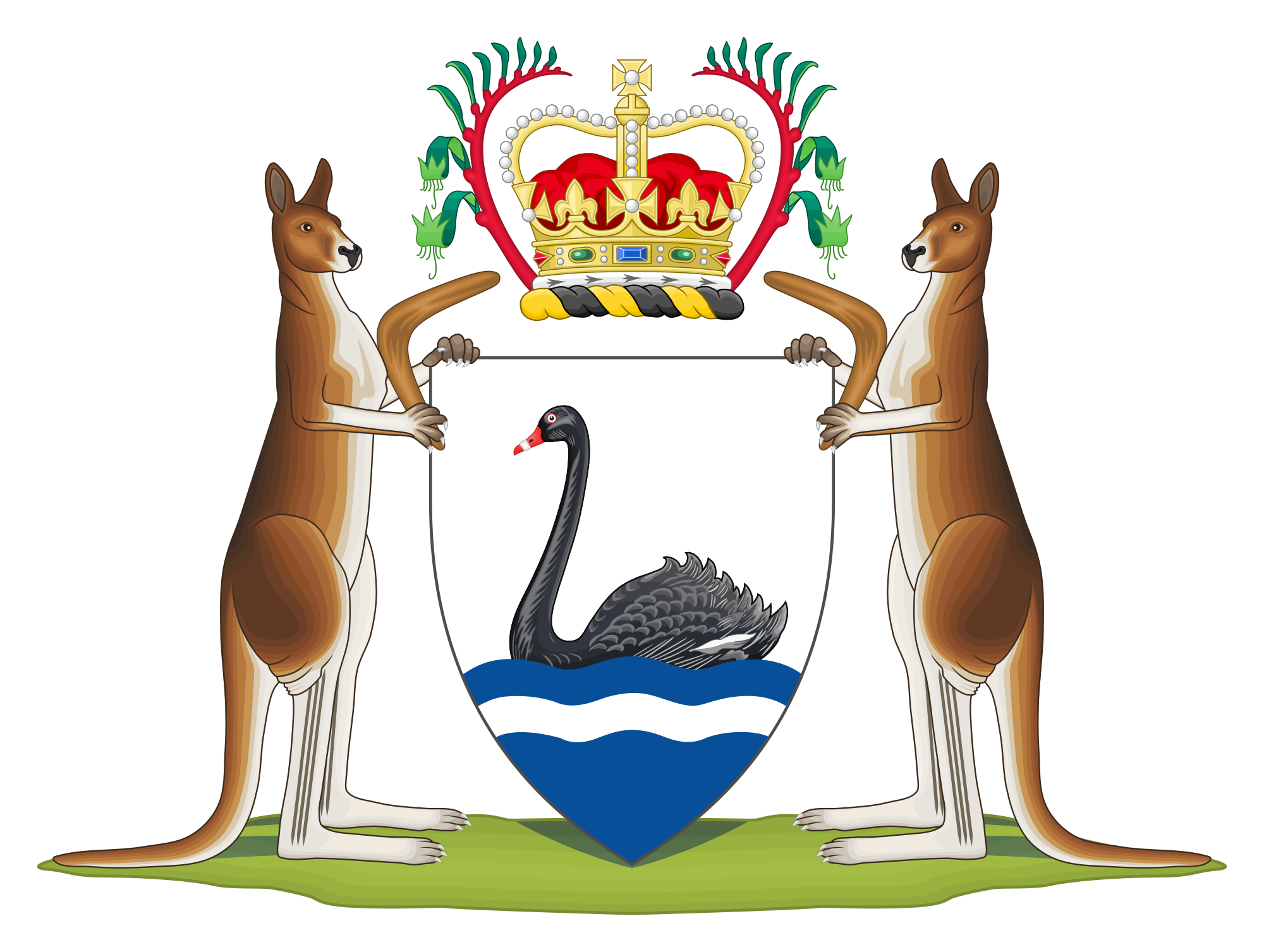 Australian drawing theme. Black swan emblems and