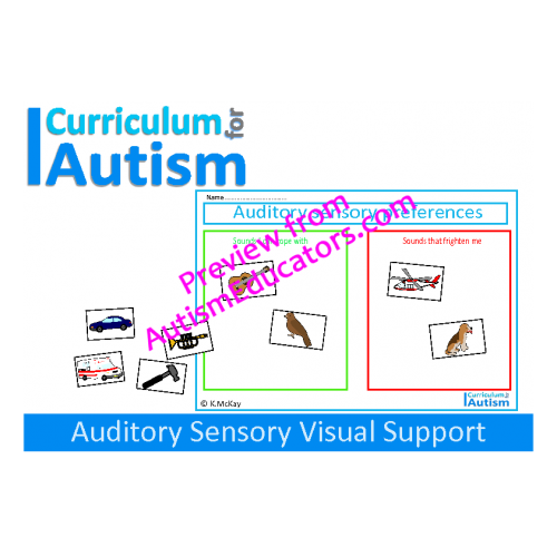 Autistic drawing visual memory. Auditory preferences sensory support