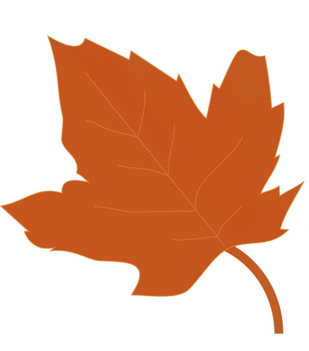 Acorn transparent autumn leave. Leaves clipart fall clip