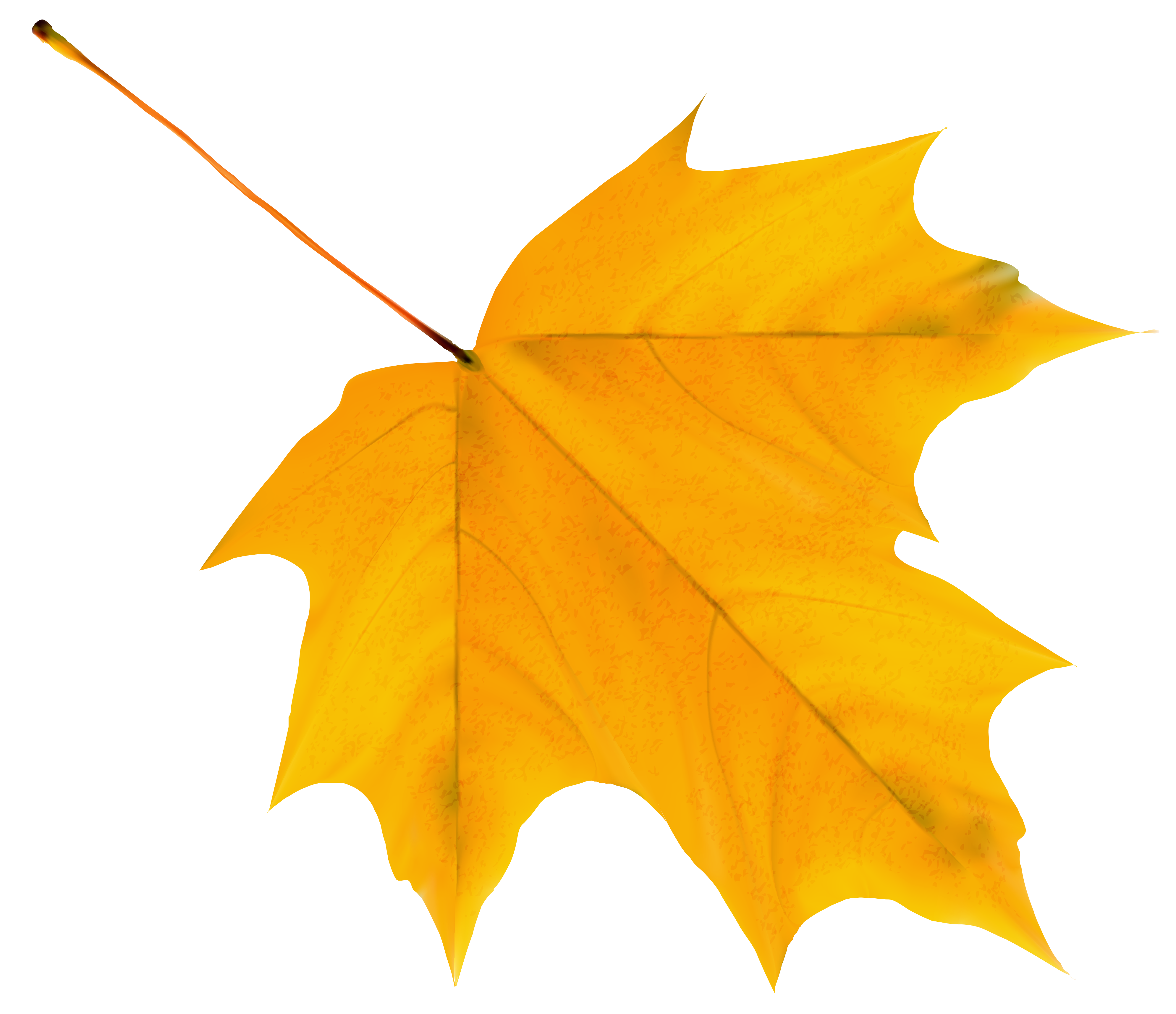 Fall leaf png. Yellow autumn clipart image