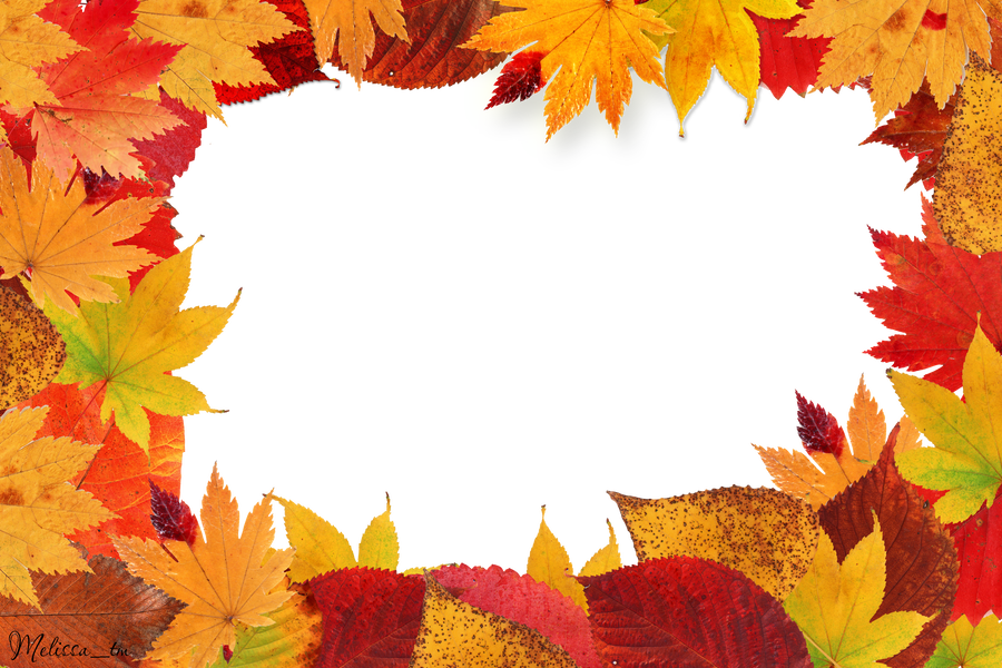 Leaves frame png. Autumn by melissa tm