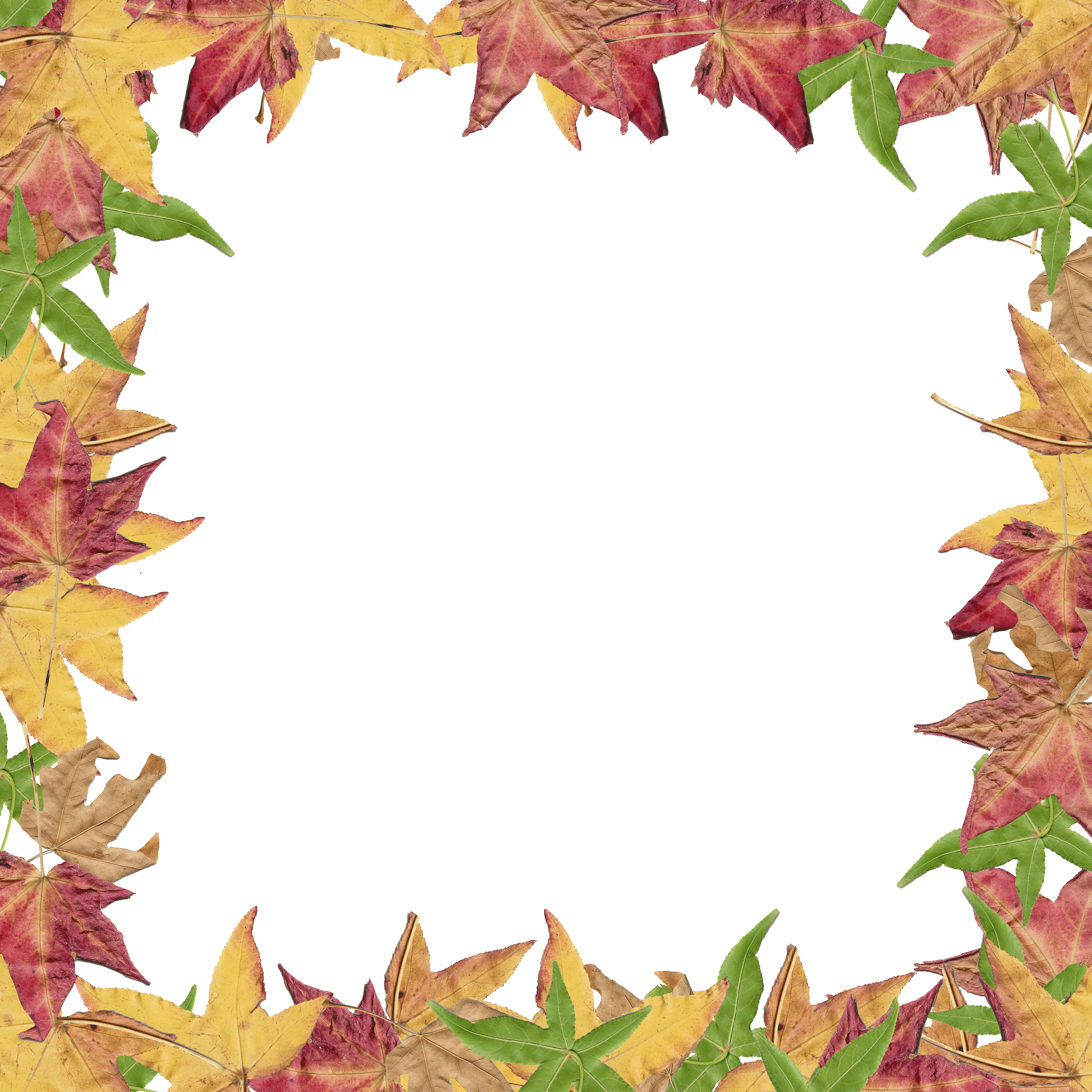 Autumn leaves border png. Free clipart fall at