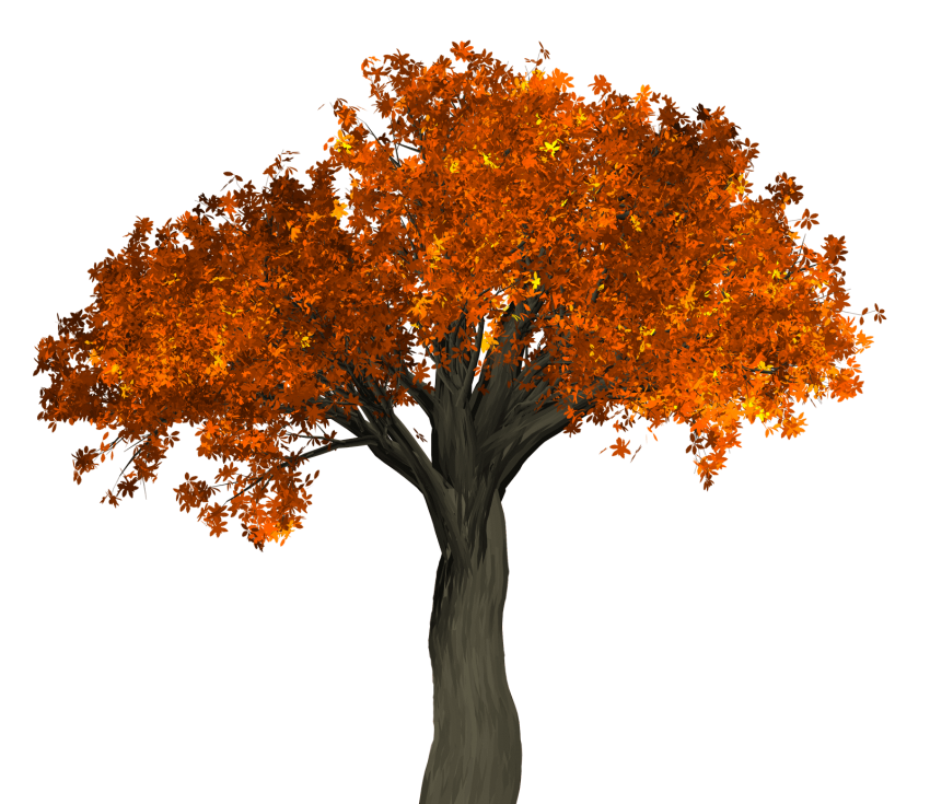 Autumn tree png. Free images toppng transparent