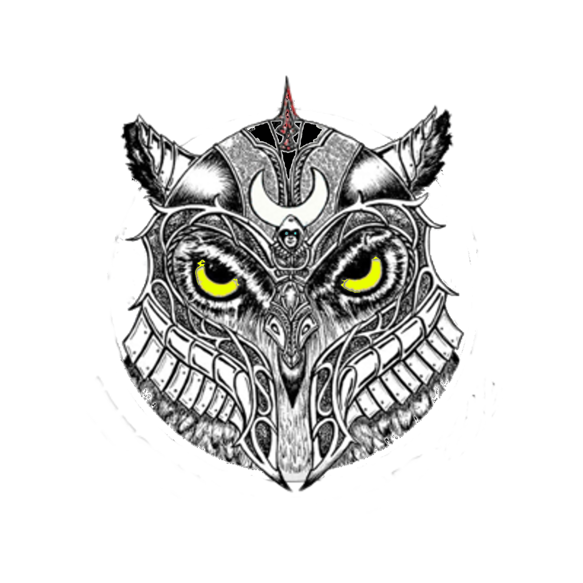 Avalanche drawing magic owl. Media tweets by knight