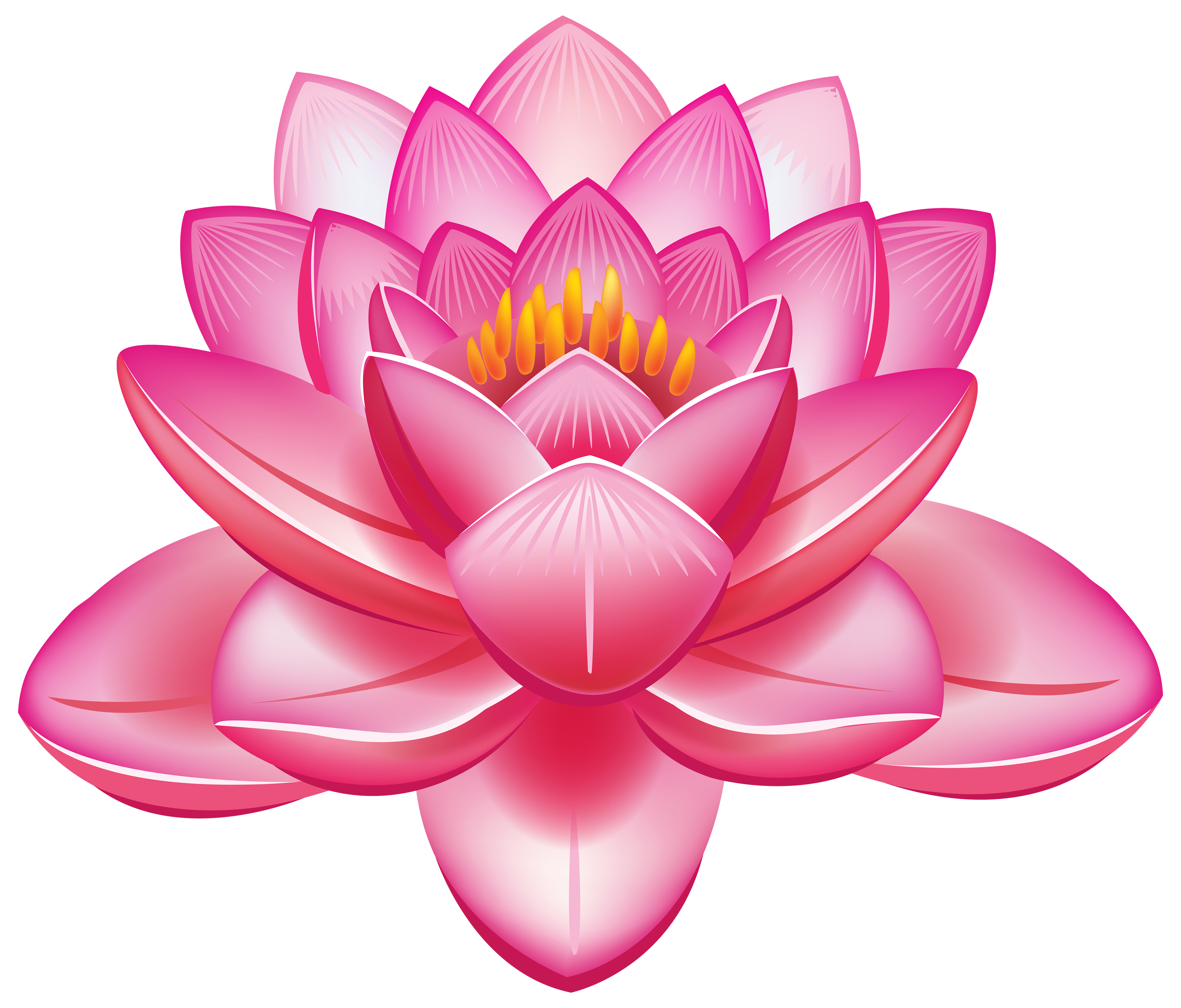 Lotus flower vector png. Clipart flowers best web