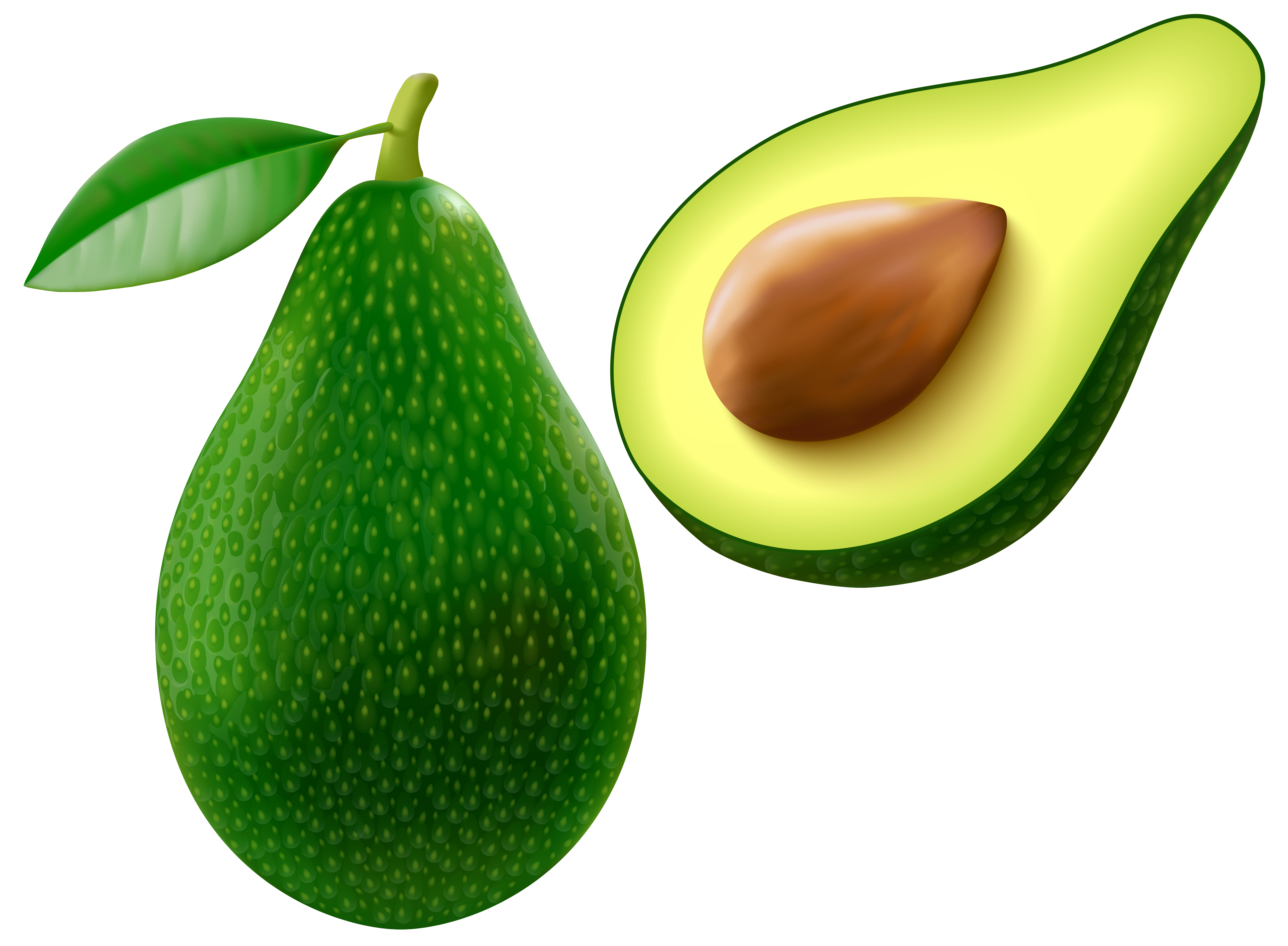 Nuts clipart avocado. Free cliparts download clip