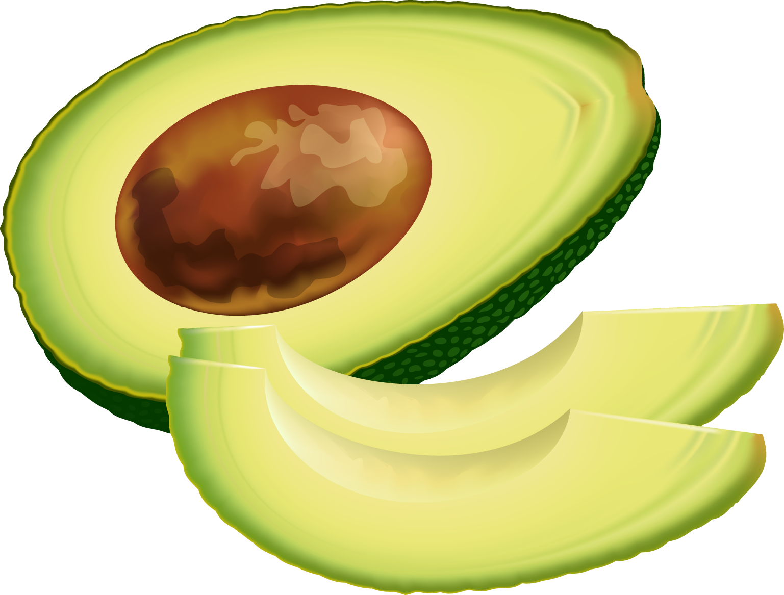 Transparent avocado animated. Free cliparts download clip