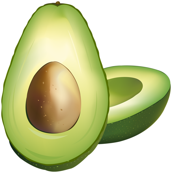 Clip art gallery yopriceville. Avocado clipart png clipart royalty free library