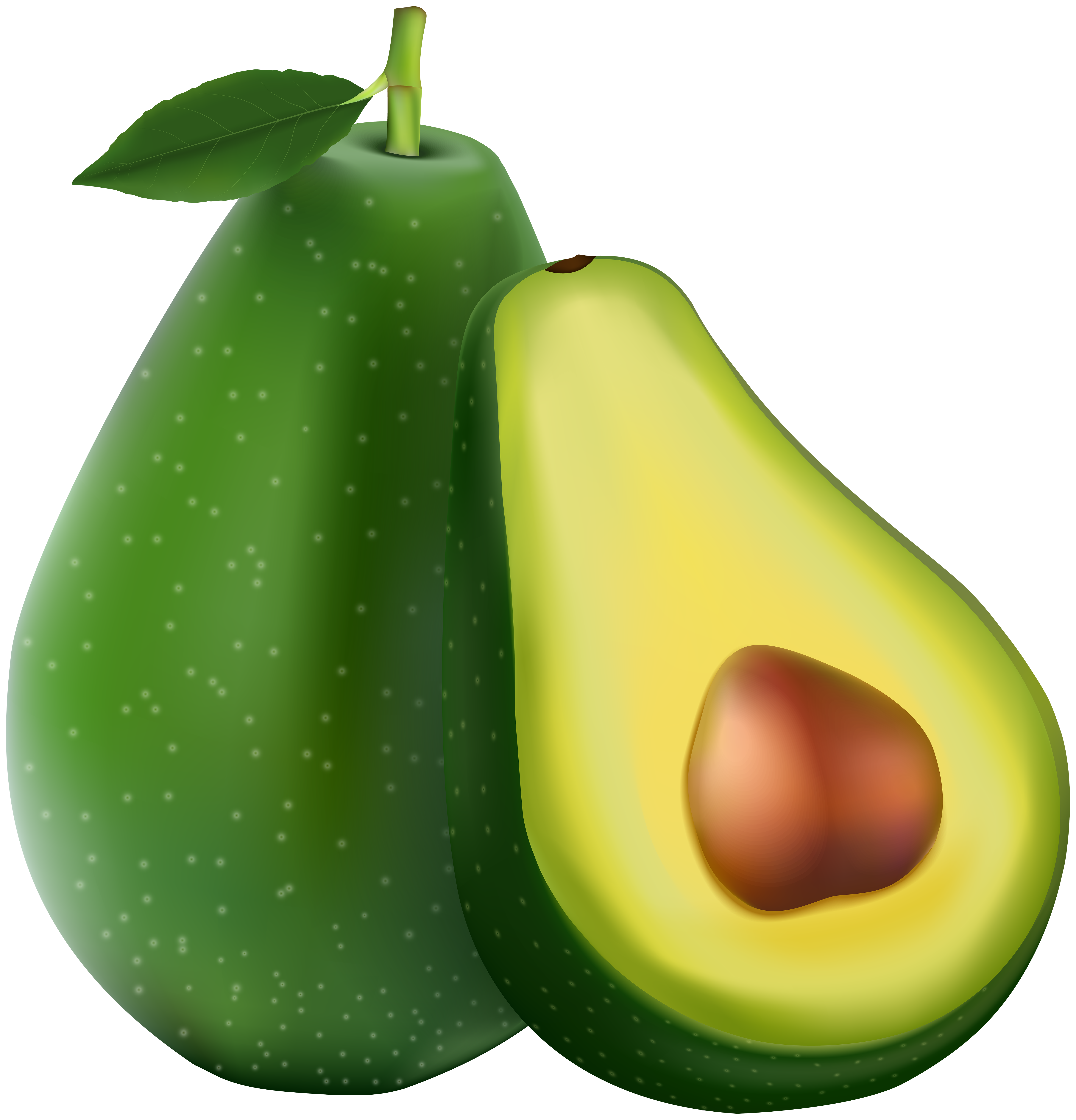 Transparent image gallery yopriceville. Avocado clipart png clip freeuse