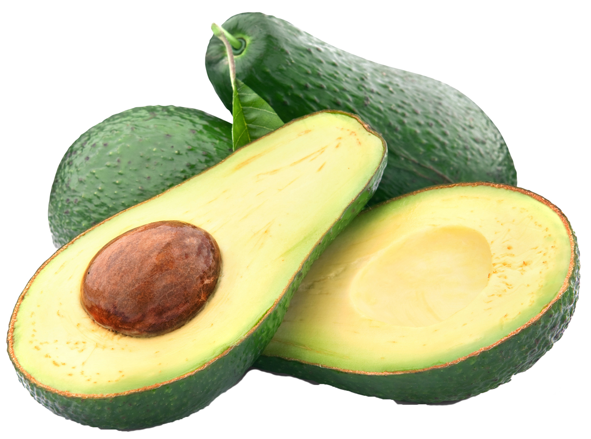 Avocado clipart large. Alligator pear png gallery