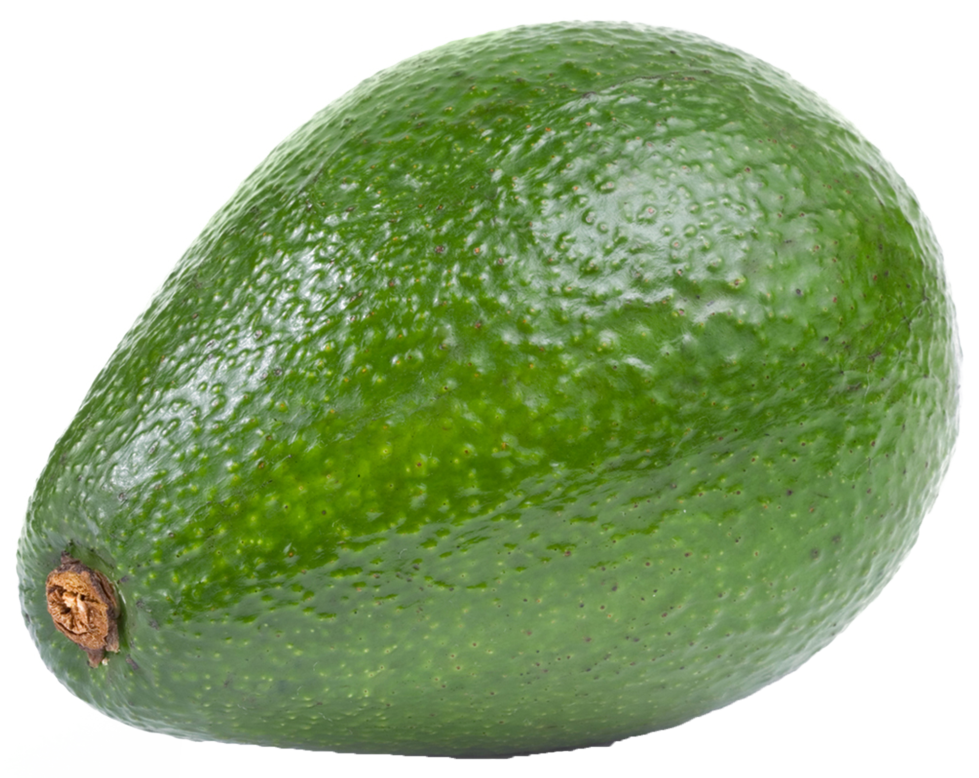 Avocado clipart large. Png gallery yopriceville high