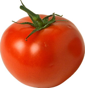 Veggies clipart common vegetable. Is a tomato fruit
