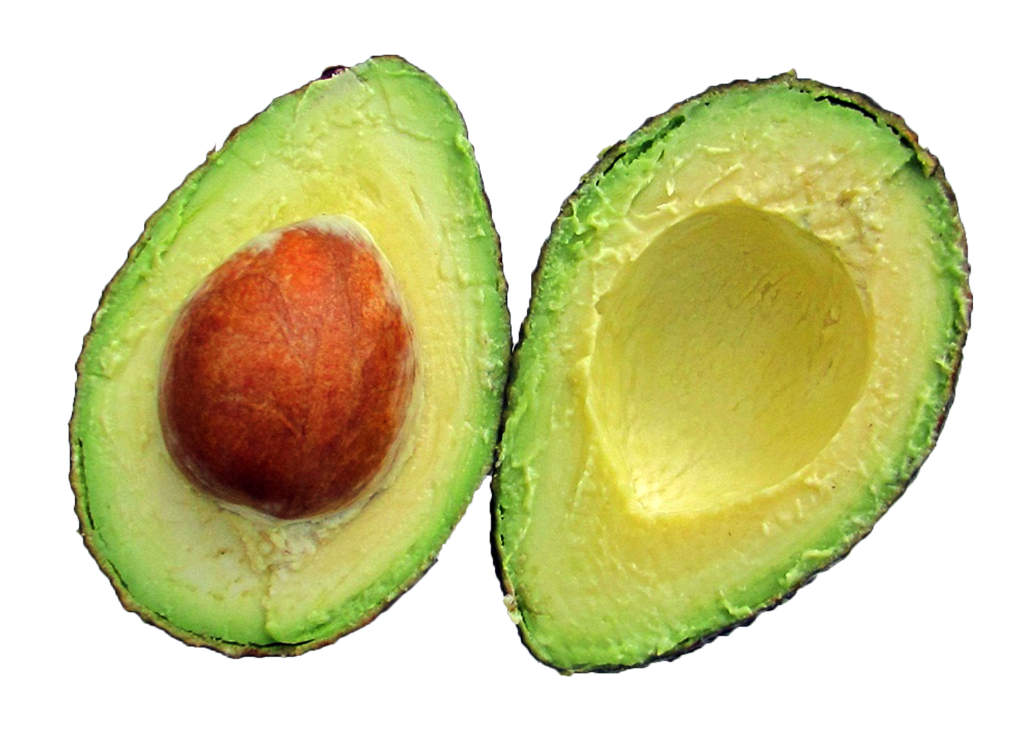 Avocado png.