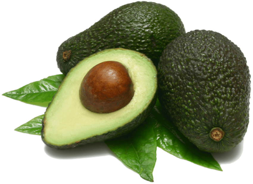 Avocado png. Free images toppng