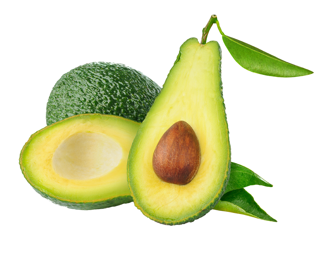 transparent avocado file
