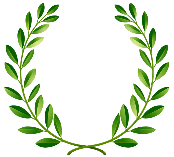 Green laurel leaves png. Greenery vector transparent vector library library