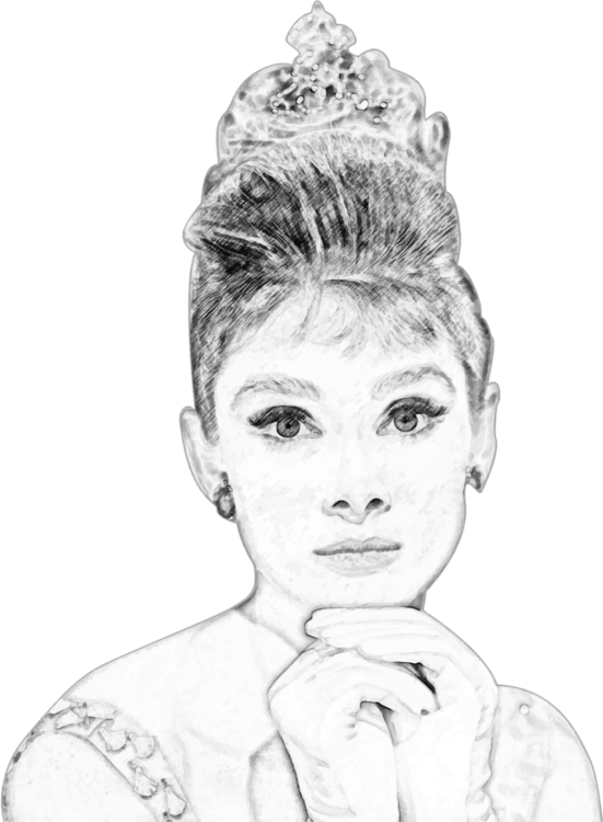 Portrait pencil art free. Chin drawing black and white clip art freeuse download