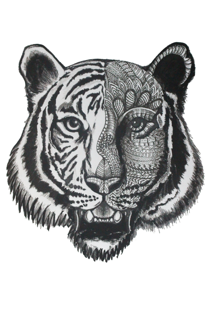 B drawing zentangle. Tiger with style by