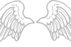 Baby angel wings png. Image