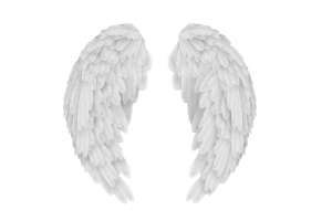 Baby angel wings png. Image related wallpapers