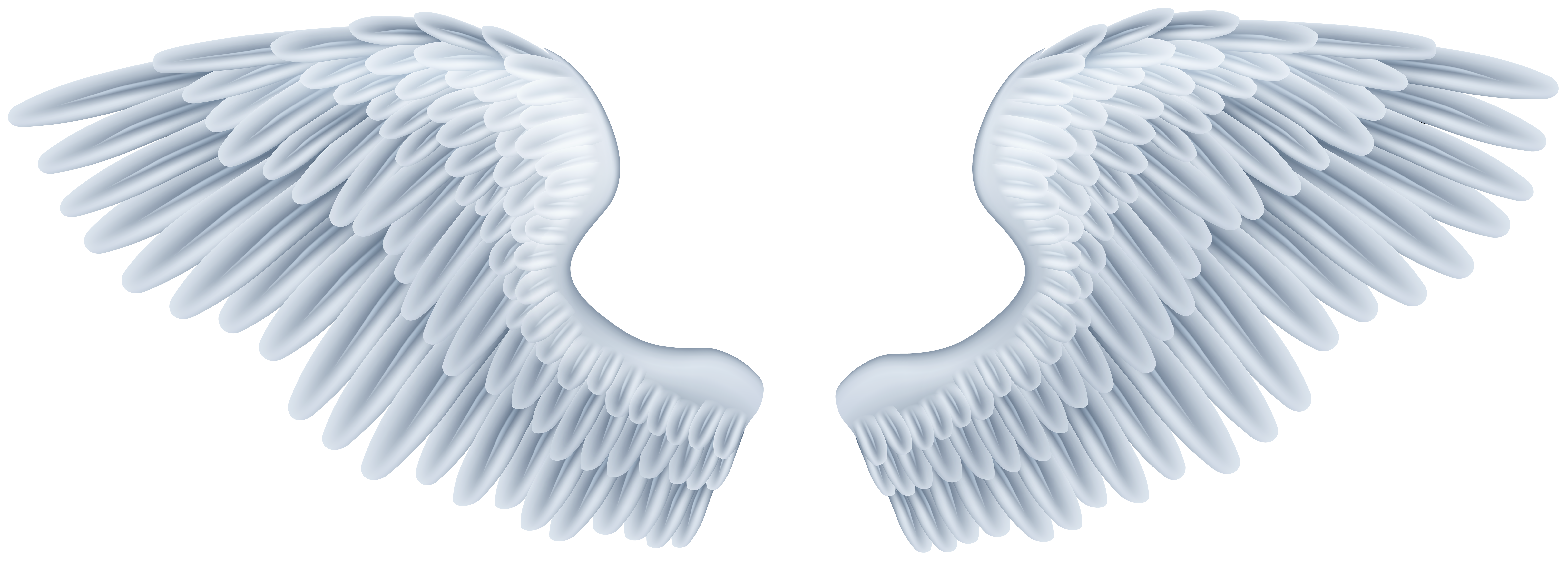 Baby angel wings png. Clip art image gallery
