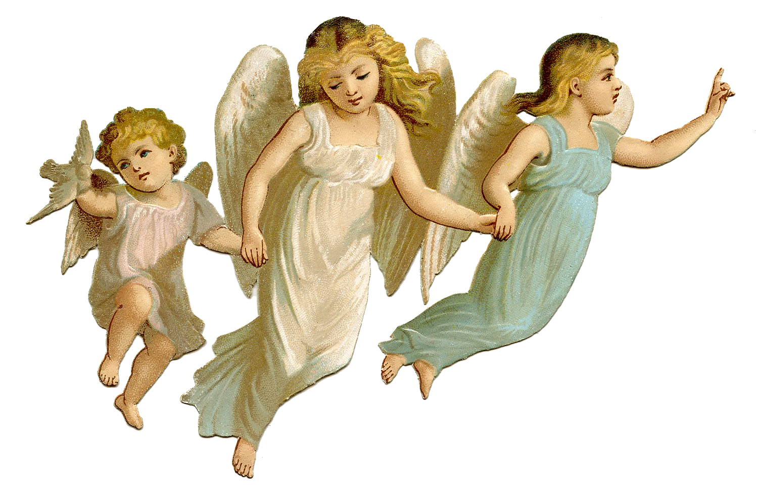 Baby angels images png. Angel pic arts
