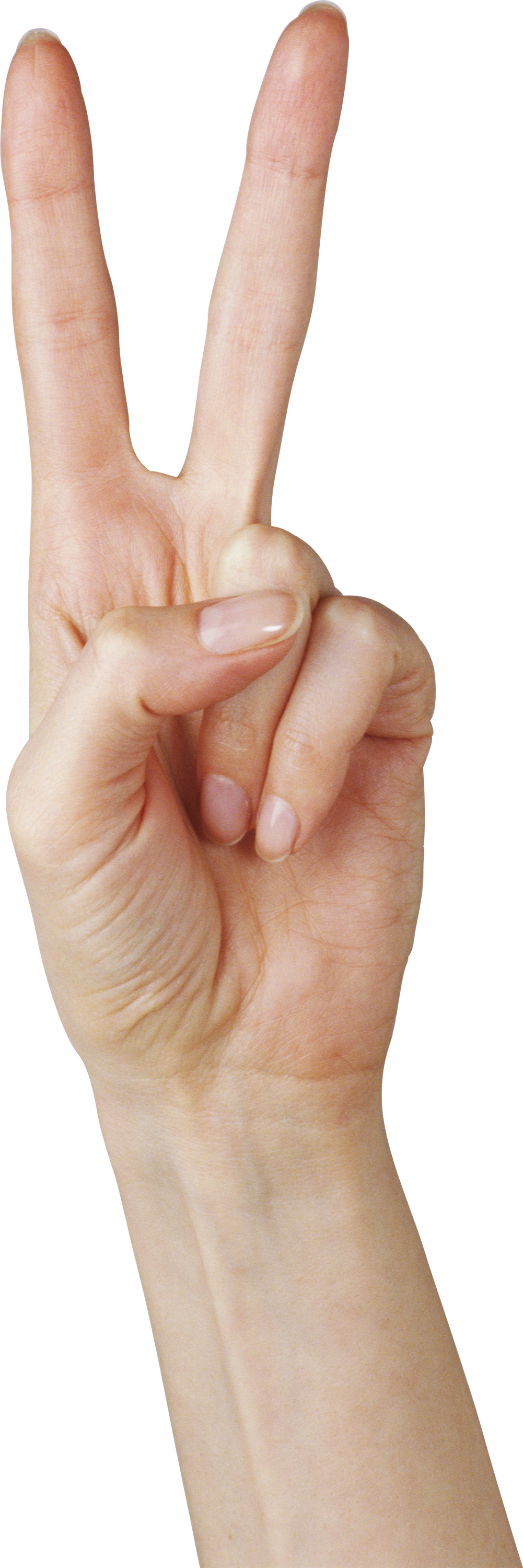 Hands of god png. Free images pictures download