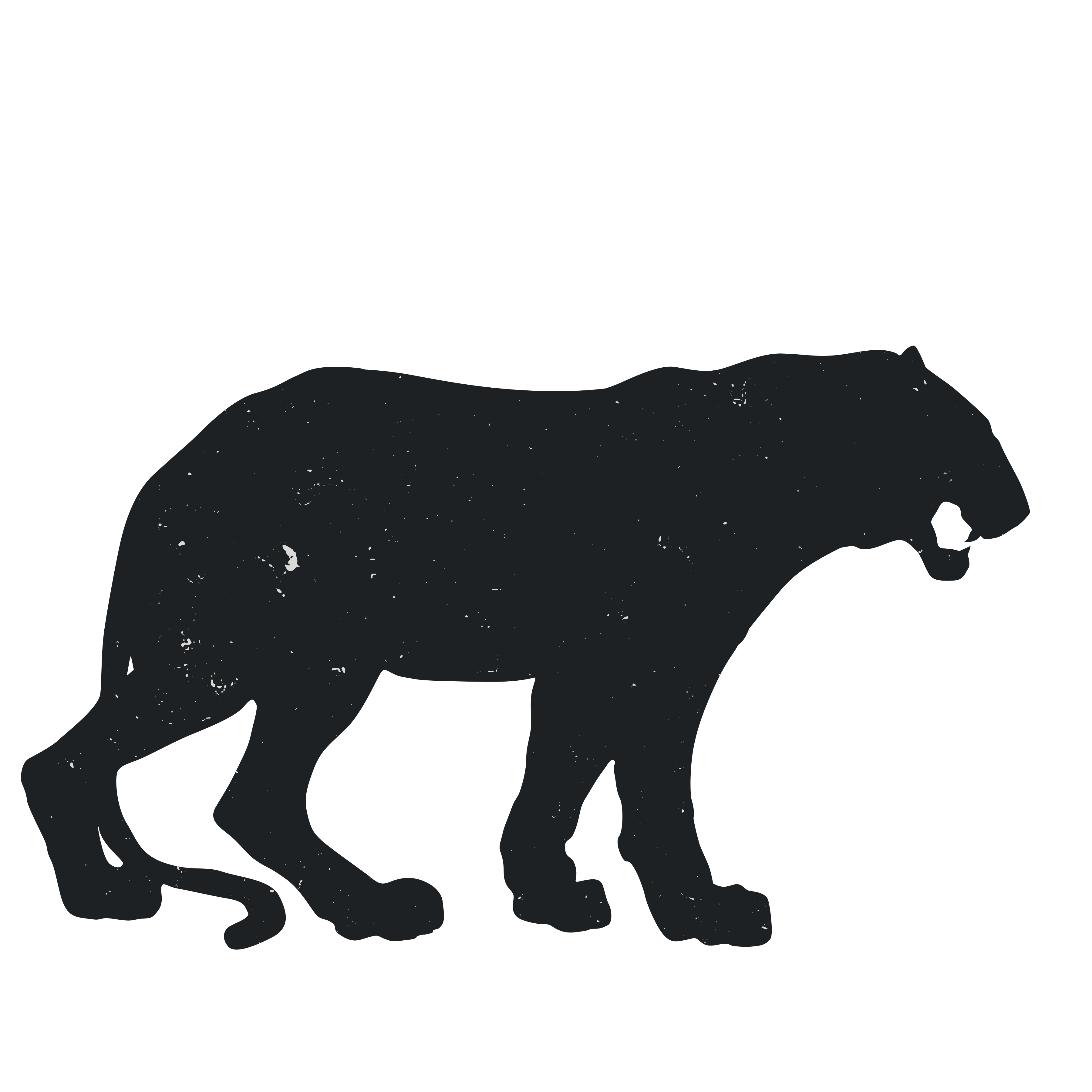 Panther walking png. Baby drawing at getdrawings