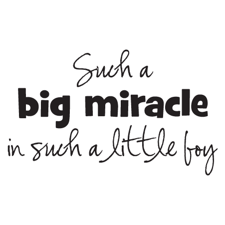 Boy quotes png. Big miracle little wall